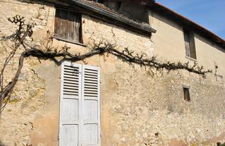 CAUE77-2019-A-patrimoine-Provins (3).JPG