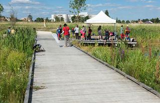 Parc du Peuple de l'Herbe à Carrières-sous-Poissy, Agence TER