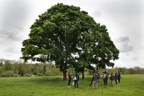 Concours général agricole agroforesterie, 2022. Jury, CEZ bergerie nationale de Rambouillet (Yvelines)