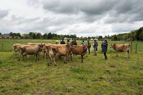 Concours général agricole agroforesterie, 2022. Jury à la ferme de la Tremblaye, La Boissière Ecole (Yvelines)
