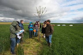 Concours général agricole agroforesterie, 2022. Jury autour de la haie champêtre et fruitière, Ferme de la Distillerie à Gouzangrez (Val d'Oise)